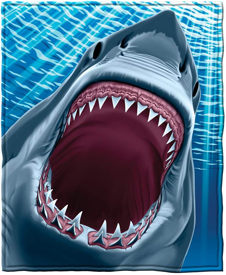 71 FgQqmeEL. AC SL1001 - Best Shark Gifts for Shark Lovers 2020 [User Rated]